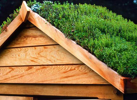 How to build a roof garden - 4