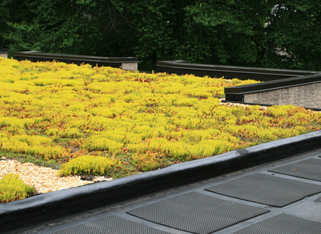 How to build a roof garden - 6