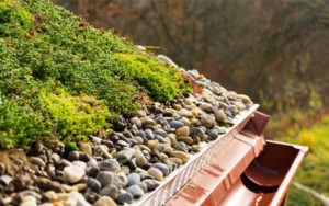 Green Roof Soils